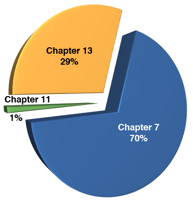 Percentages of chapter bankruptcy filings